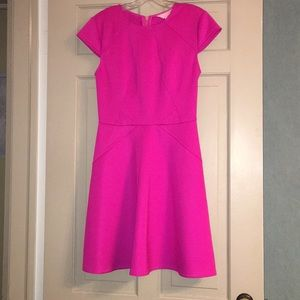 NWT Ted Baker Skater Dress
